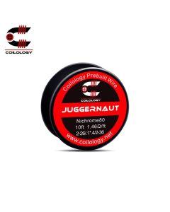Coilology Juggernaut NiCr (Nickel Chrom) 3,14m Draht